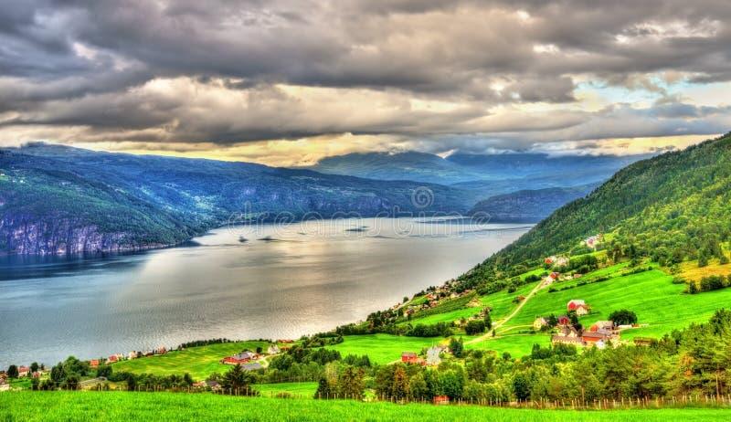 Vue de fjord de Nordfjorden près d'Utvik - la Norvège photo stock