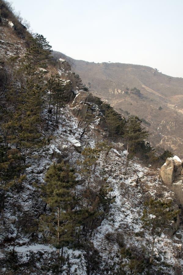 Vue de flanc de montagne en hiver tôt image stock