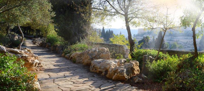 Vue de Jérusalem depuis le Mont des Oliviers photos libres de droits