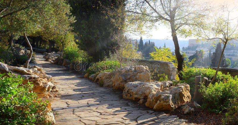 Vue de Jérusalem du mont des Oliviers images stock
