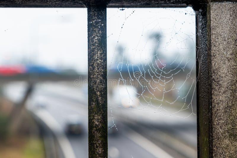 Vue de jour de toile d'araignée au-dessus d'autoroute BRITANNIQUE photos libres de droits