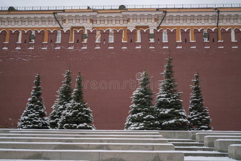 Vue de Kremlin et de mausol?e de L?nine en hiver images stock
