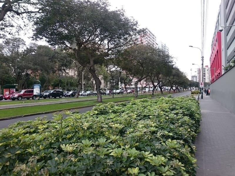 Vue de l'avenue de Salaverry photo libre de droits