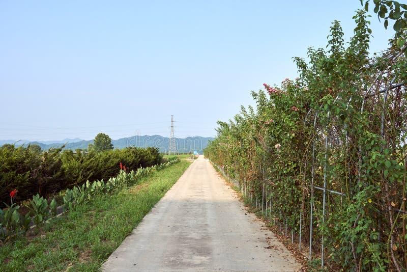 Vue de la campagne paisible avec une route menant directement à l'horizon dans Jechun, Corée du Sud photographie stock libre de droits