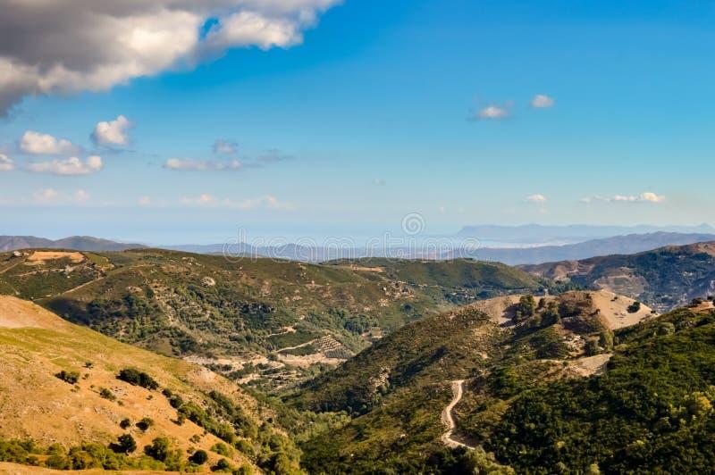 Vue de la campagne verte images stock