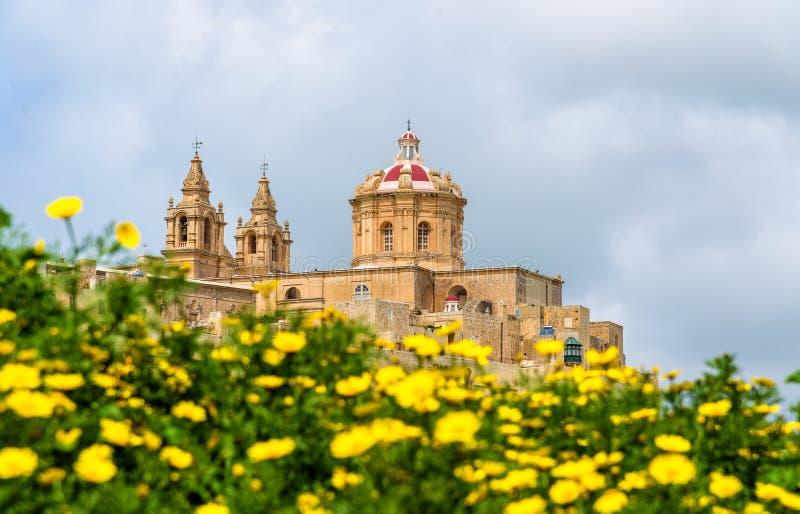 Vue de la cathédrale de St Paul dans Mdina image libre de droits