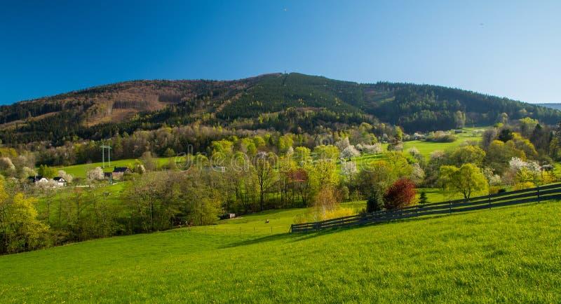 Vue de la colline image libre de droits