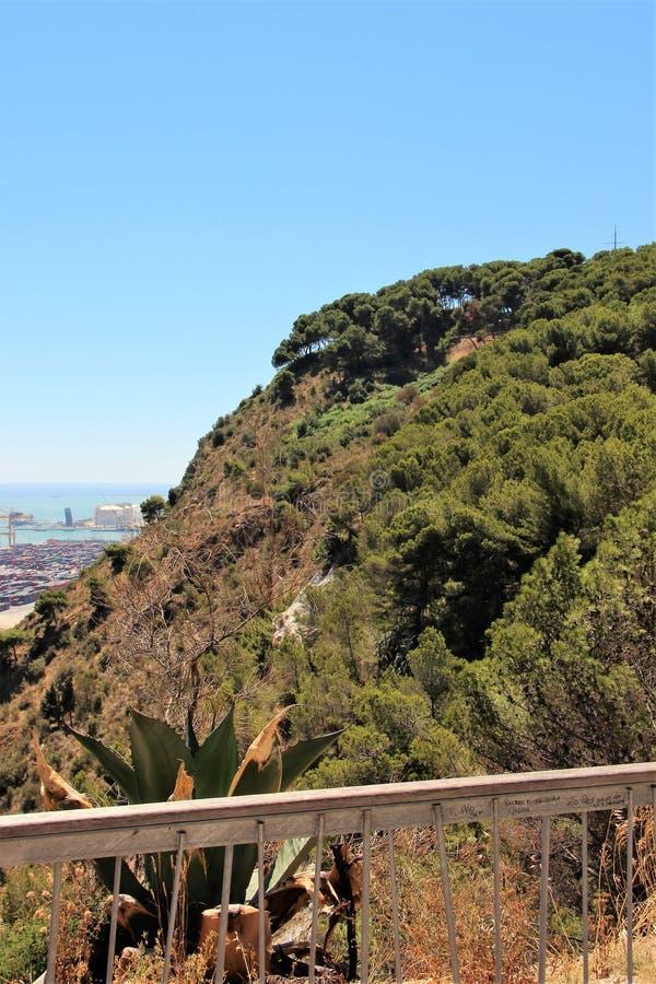 Vue de la colline verte et de la partie du port de cargaison à Barcelone, Espagne photo libre de droits