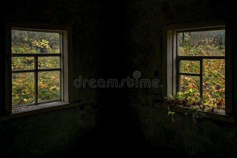 Vue de la fenêtre sur la cour d'automne photo libre de droits