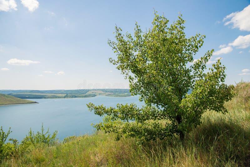 Vue de la grande rivière photographie stock