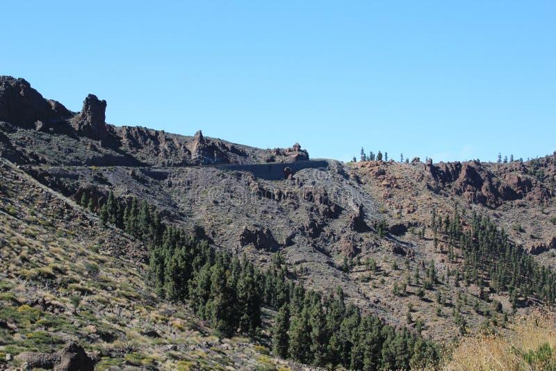 Vue de la lave congelée du volcan et des arbres photos libres de droits