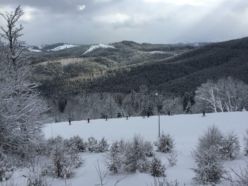 Vue de la montagne en hiver photos libres de droits
