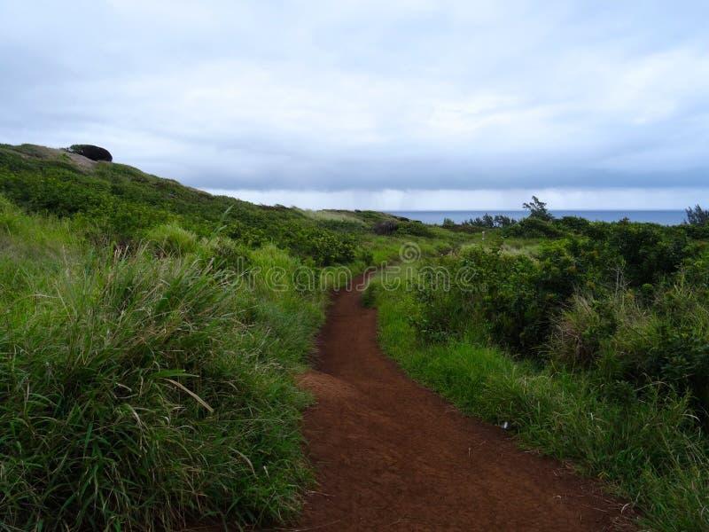 Vue de la nature en littoral du nord-ouest de Maui images stock