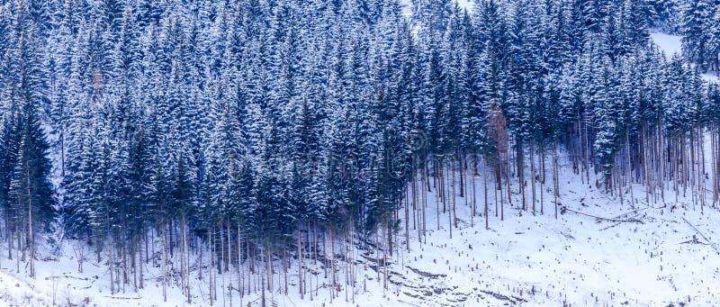 Vue de la pente de montagne dans la station thermale autrichienne photographie stock