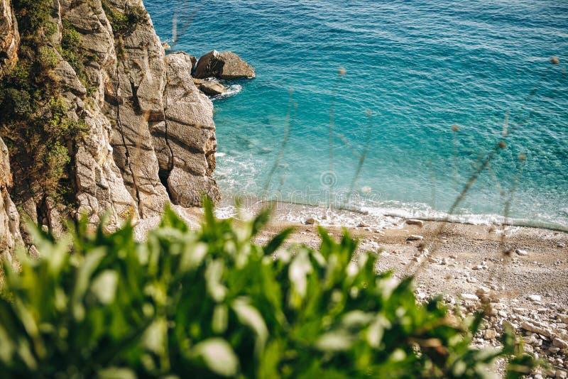 Vue de la plage ou du rivage sauvage photographie stock libre de droits