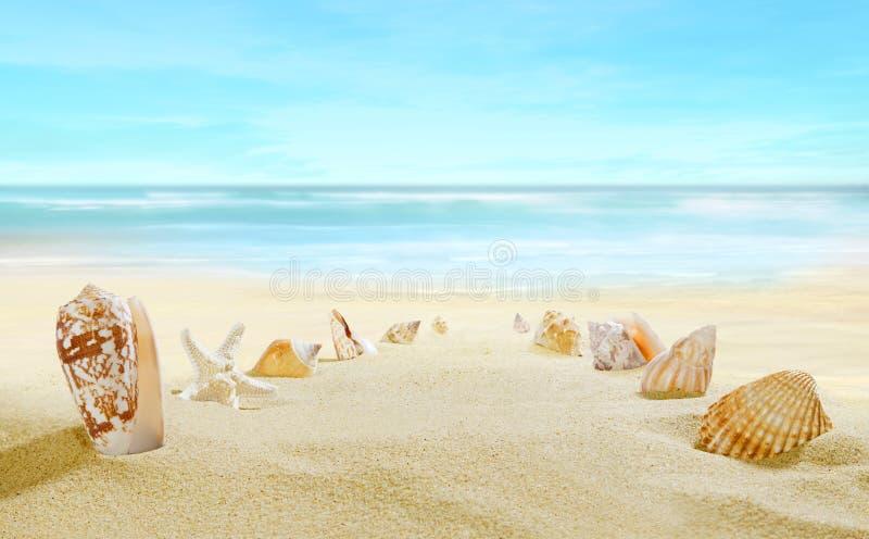 Vue de la plage sablonneuse image libre de droits