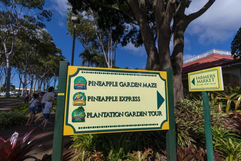 Vue de la plantation d'ananas de Dole dans Wahiawa, destination de visite image libre de droits