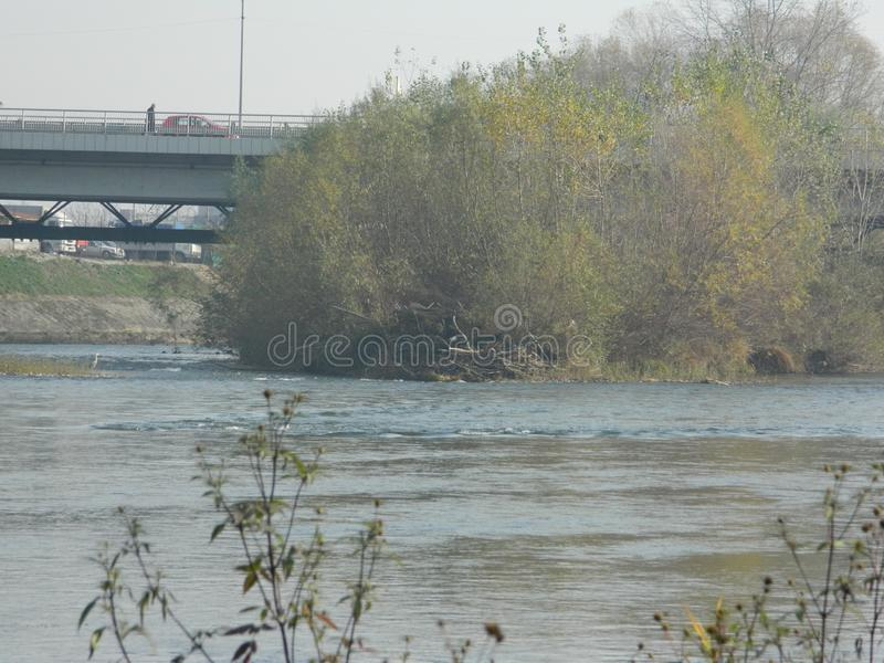 Vue de la rivière et de la végétation photos stock