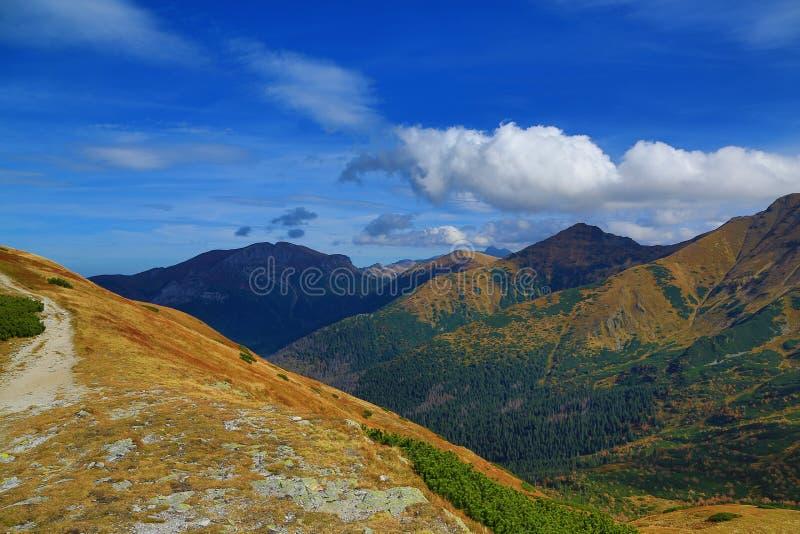 Vue de la route sur des montagnes de polonais de Tomanowa Tatry, automne image stock