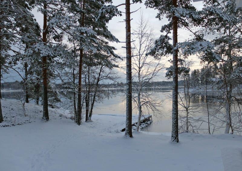 Vue de lac images stock