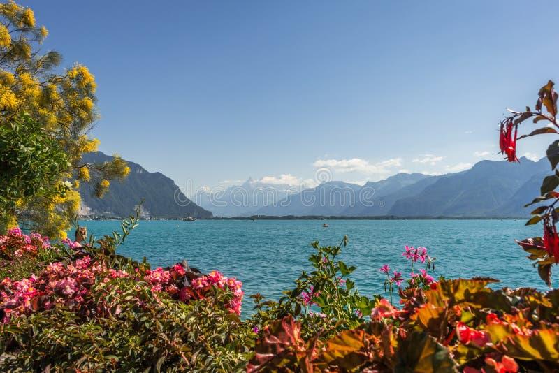 Vue de lac geneva photos libres de droits