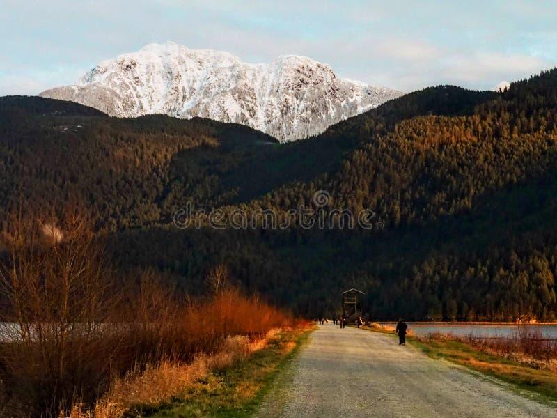 Vue de lac Pitt d'un touriste prenant des photos images libres de droits