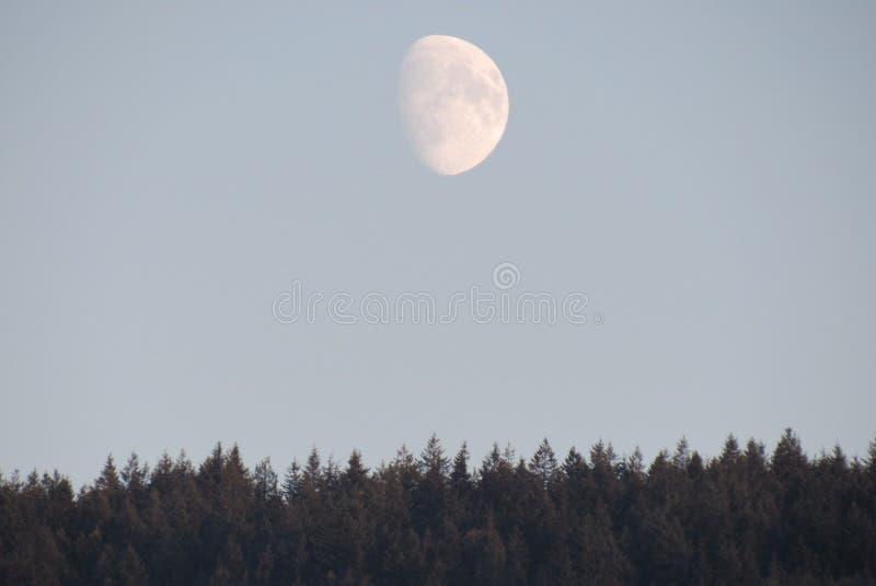 Vue de lune de la baie WA de découverte images libres de droits
