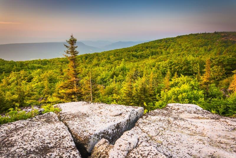 Vue de matin de conserve de roches d'ours, en Dolly Sods Wilderness images libres de droits