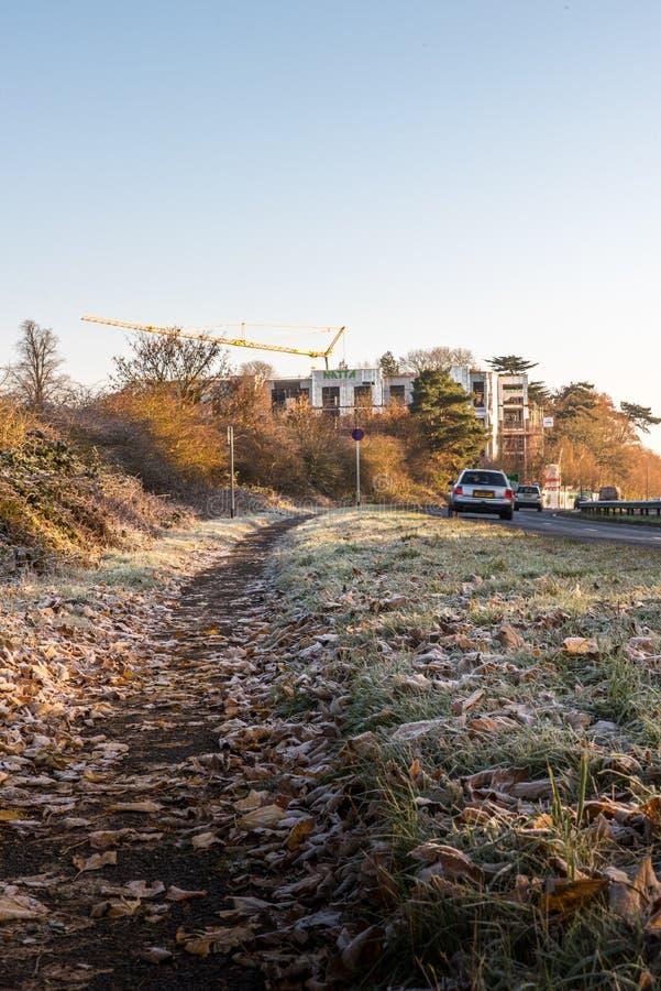Vue de matin des feuilles congelées sur l'autoroute BRITANNIQUE images stock