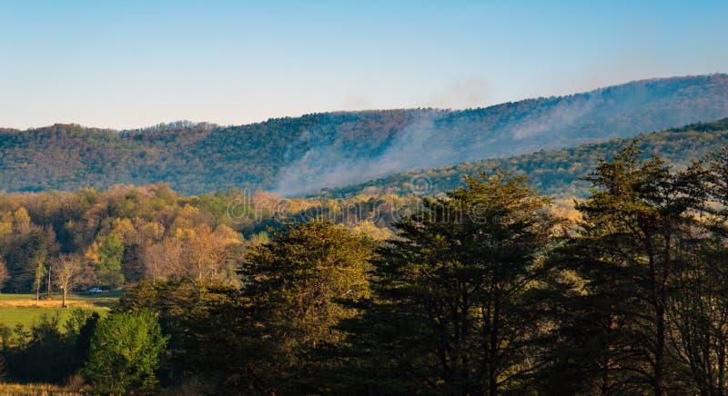 Vue de matin de Forest Fire sur la montagne de Catawba images libres de droits