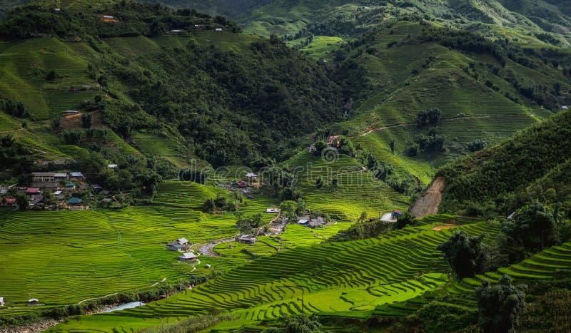 Vue de montagne avec la terrasse de riz dans Sapa Vietnam photos stock