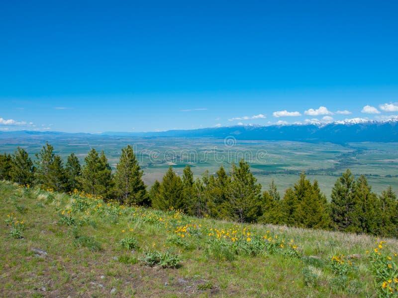 Vue de montagne et de vallée image libre de droits