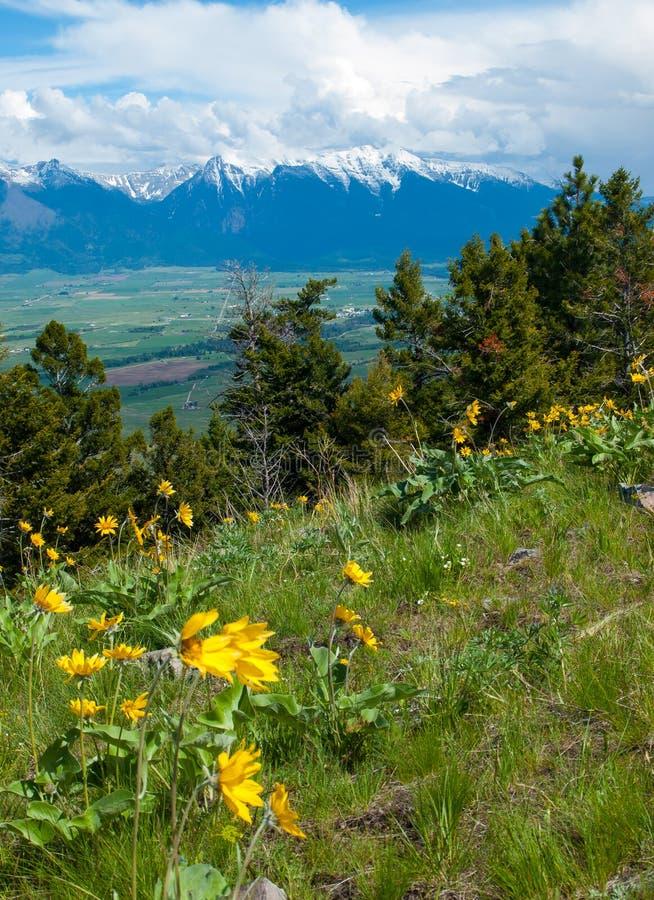 Vue de montagne et de vallée photos stock