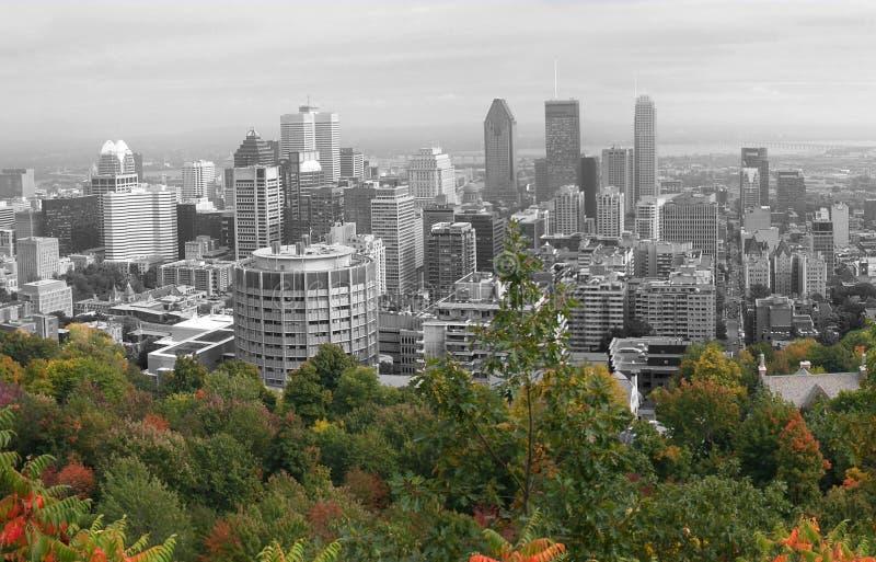 Vue de Montréal - d'isolement image libre de droits