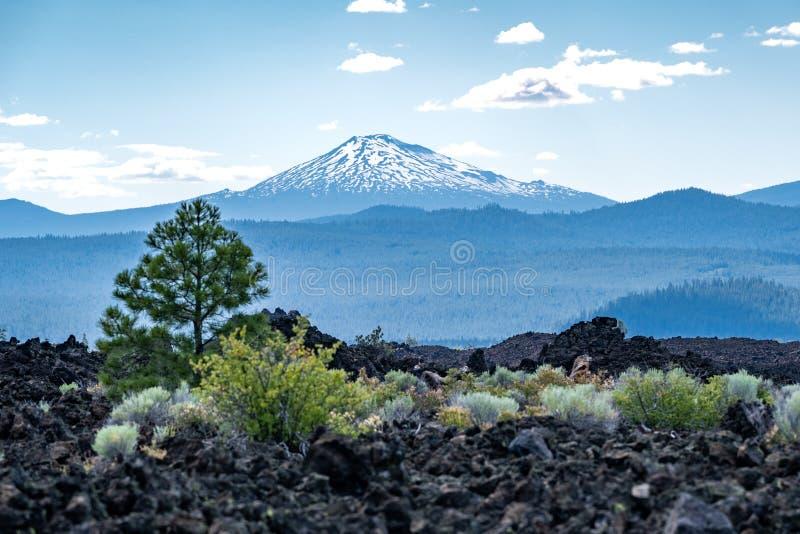 Vue de Mt Célibataire de Newberry Volcano National Monument Roches de lave, arbres et végétation noirs de désert dans le premier  images libres de droits