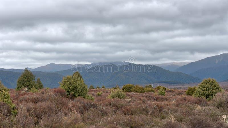 Vue de Mt Ruapehu comme vu de la route de désert au Nouvelle-Zélande photographie stock
