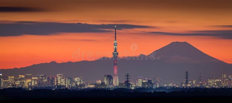 Vue de nuit de Tokyo avec le Mt Skytree de Fuji et de Tokyo photo stock