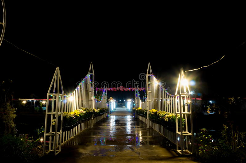 Vue de nuit du parc images libres de droits