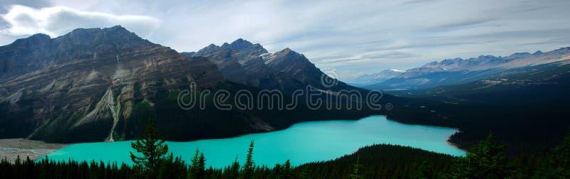 Vue de Panoramatic de lac Peyto dans Rocky Mountains photo stock