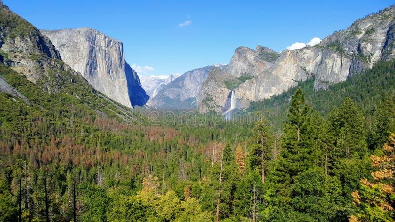 Vue de parc national de Yosemite Forêt avec des mounatins et des cascades à l'arrière-plan images libres de droits