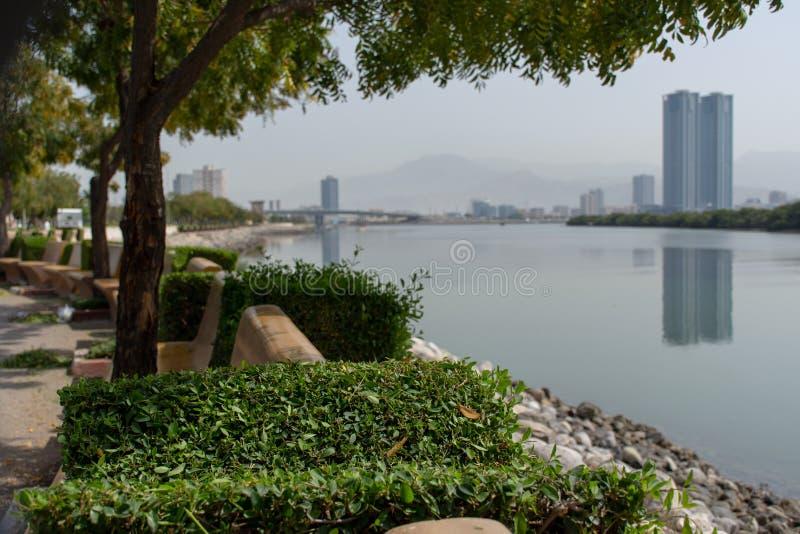Vue de parc de Ras al Khaimah RAK Corniche de dessous les arbres vers l'eau image stock