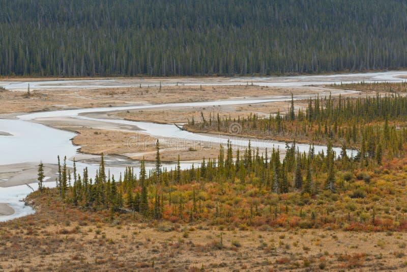 Vue de passage de Howse, Canada images libres de droits