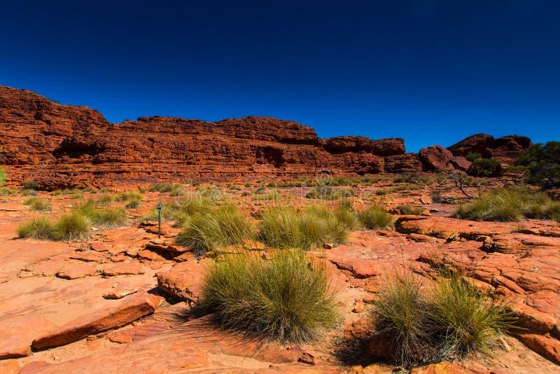 Vue de paysage d'Australie à l'intérieur image libre de droits