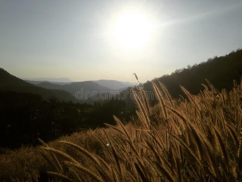 Vue de paysage de montagne images libres de droits
