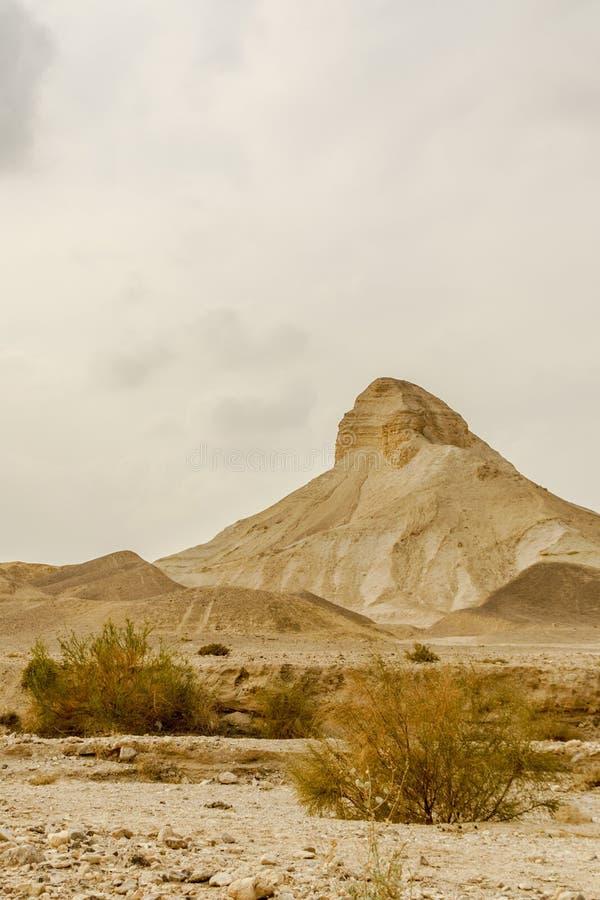 Vue de paysage de Verical sur la région sauvage sèche de Moyen-Orient en Israël images stock
