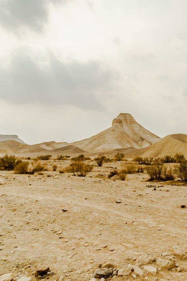 Vue de paysage de Verical sur la région sauvage sèche de Moyen-Orient en Israël photo stock