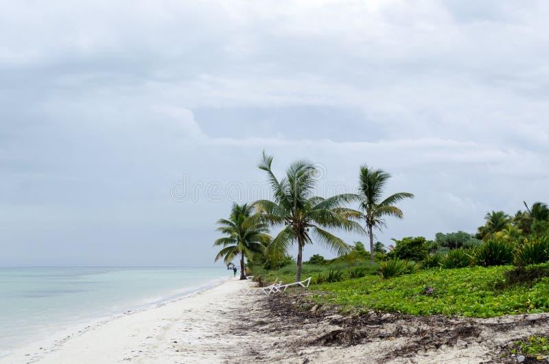 Vue de plage tropicale en Cayo Guillermo photographie stock libre de droits