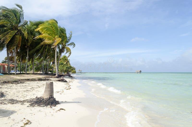 Vue de plage tropicale en Cayo Guillermo images libres de droits