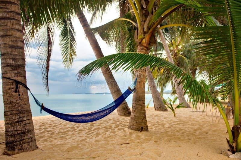 Vue de plage vide tropicale gentille de sable photo stock