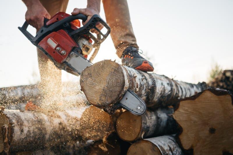 Vue de plan rapproché sur la tronçonneuse dans des mains fortes de travailleur de bûcheron image stock